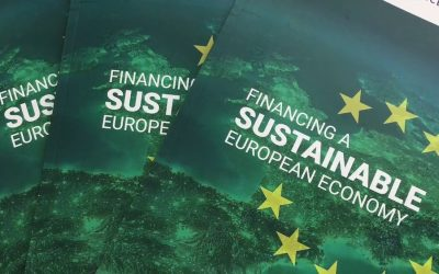 Reaction: Final Report by the HLEG on Sustainable Finance