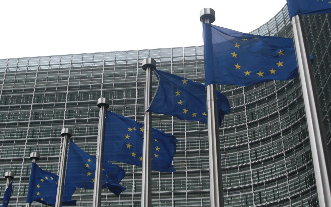 Reaction: European Commission's Action Plan on Sustainable Finance